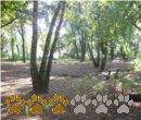 Vorschaubild Jacobipark