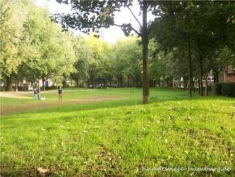 Lohmühlenpark 03