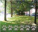 Vorschaubild Nordschleswiger Straße