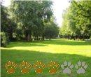 Vorschaubild Wehberspark