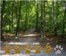Vorschaubild Heimfelder Holz