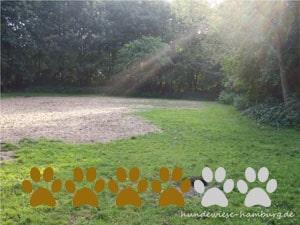Hundewiese Alsterwiesen I