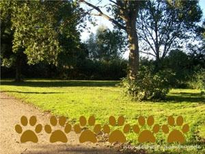 Hundewiese Eichbaumpark