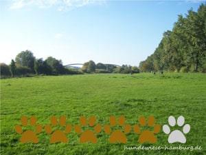 Hundewiese Elbpark Entenwerder