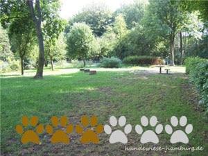 Hundewiese Hans-Christian-Andersen-Park