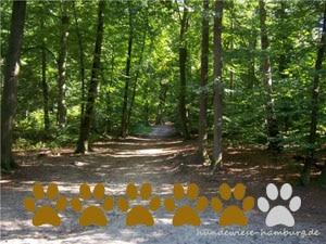 Hundewiese Heimfelder-Holz