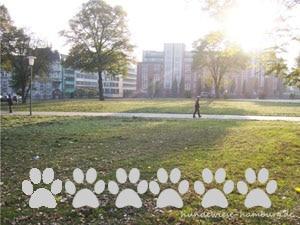 Hundewiese Repsoldpark