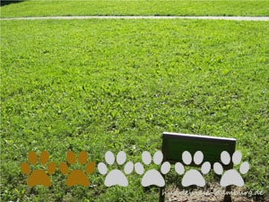 Hundewiese Rosengarten