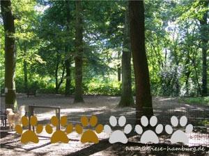 Hundewiese Stadtpark Winterhude