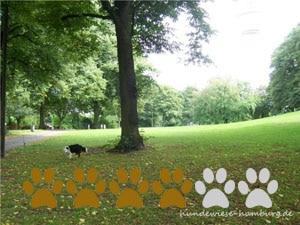 Hundewiese Sternschanzenpark