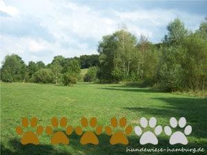 Hundewiese Waldpark-Marienhöhe 1