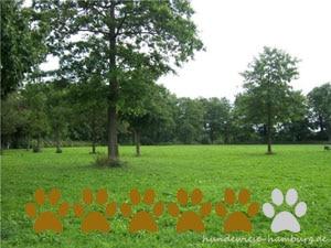 Hundewiese Westerpark-Jürgensallee