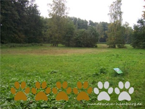 Hundewiese Alsterwiesen II